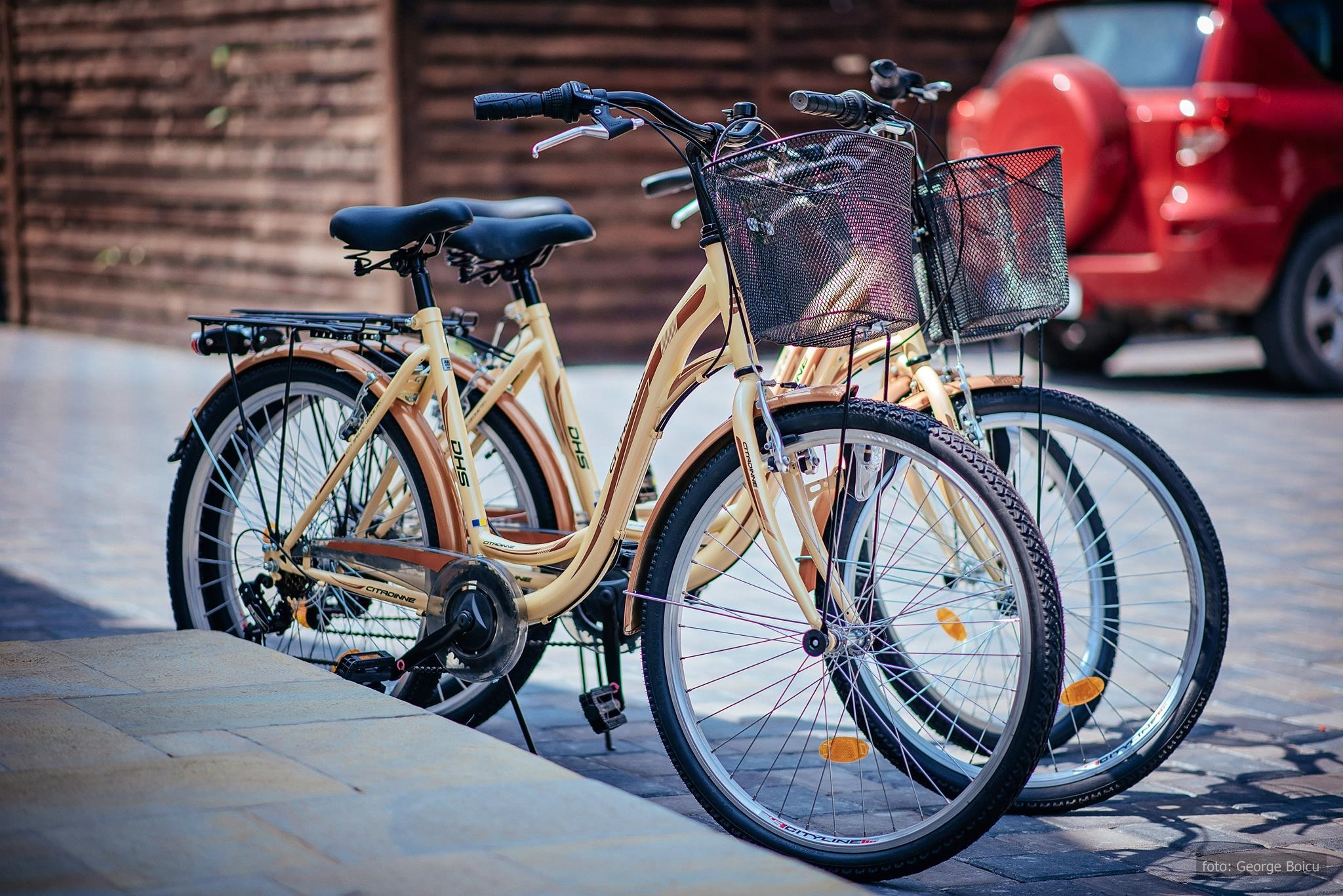 biciclete boem 2